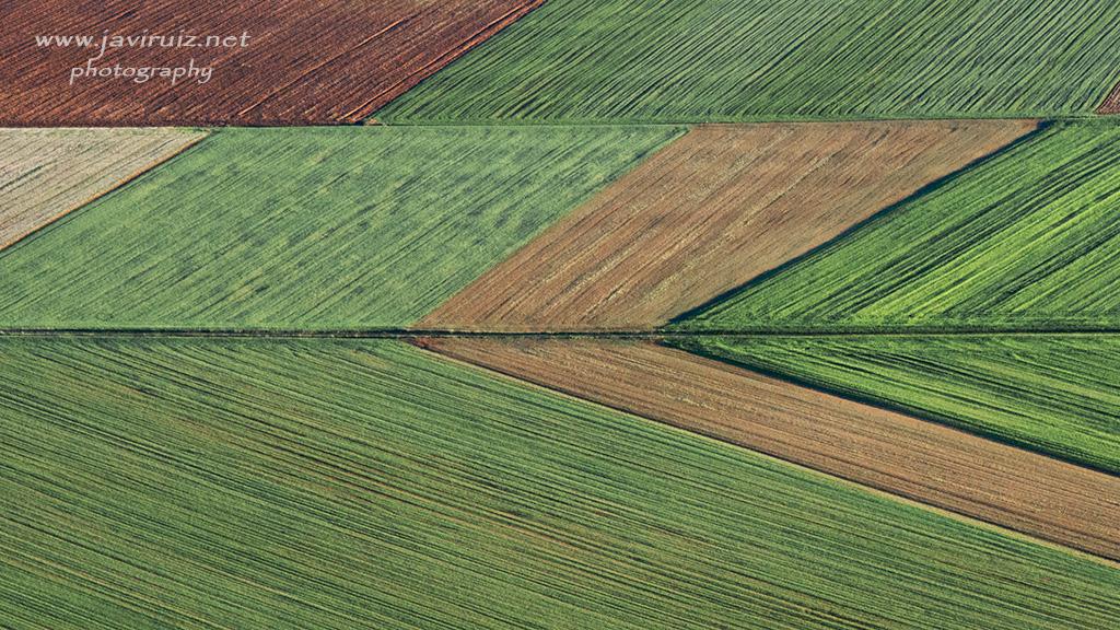 campos-labrados