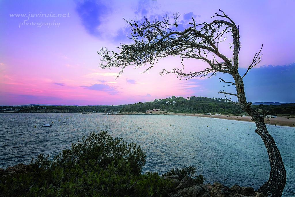 Playa Castell sunset